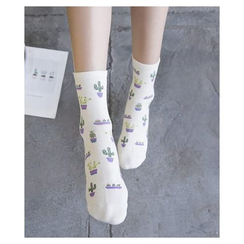 Womens Cute Cactus and Succulent Casual Cushioned Crew Sock Outdoor Long Sock Fan Shop