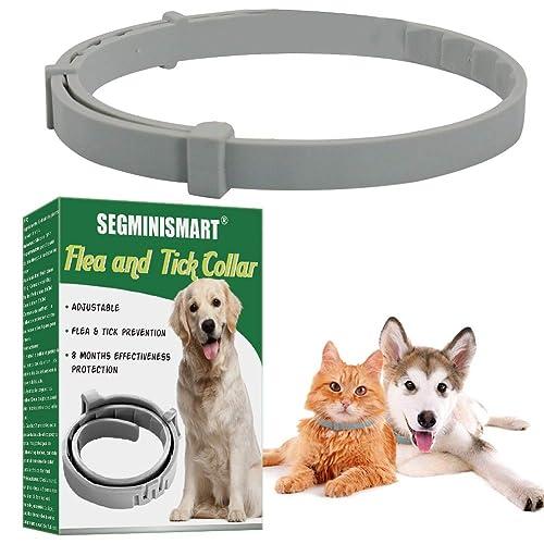 Adjustable Length Waterproof Cat Anti Flea Collar Magichome Flea and Tick Collar for Cat