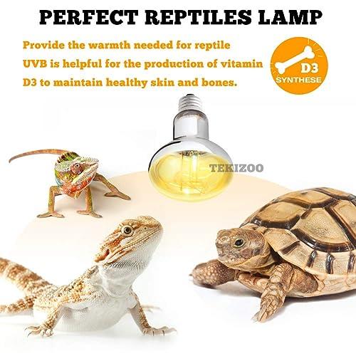 Reptile Turtle Amphibian Light Holder Bearded Dragon Bulb Reptiles Socket