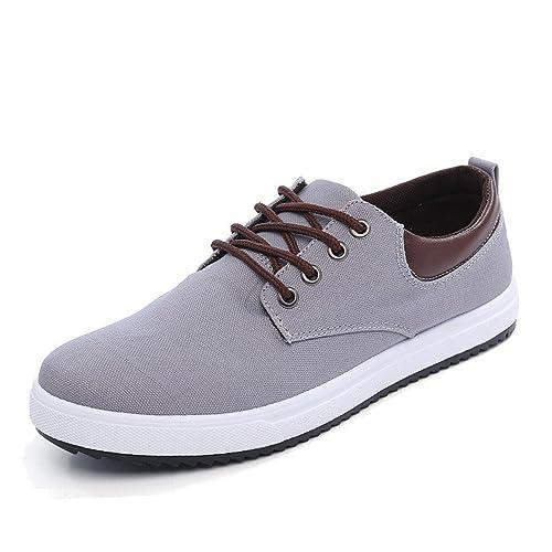 8ffe967126ea ZHAOLIYUN Men's Casual Lace-up Canvas Skate Shoes Fashion Sneakers