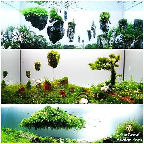 Plant Holder for Live Fish Tank /& Fresh Water Aquascape Ornament Plants Aquarium Aquarium Magnifying Glass Shelf YOU+ 3PCS Aquatic Red Worm Cups Water Planter Pots with 6 Suction Cups